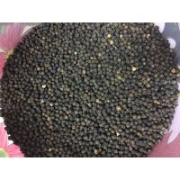 Kerala Black Pepper