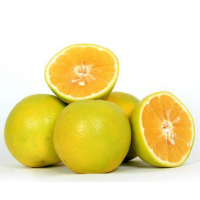 Fresh Organically grown sweet lime