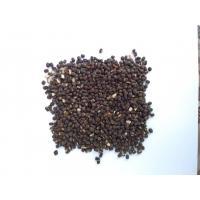 Seed Quality Urad Dal