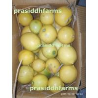 Seedless Lemons