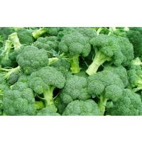 Home grown Broccoli Available