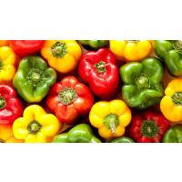 Red and yellow capsicum