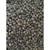 Black Urad Dal Available