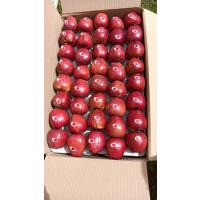 Royal Red Himachal Apples