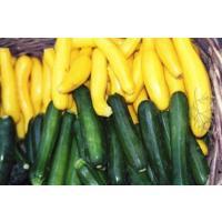 zucini green yellow.jpg