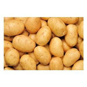 patato image.jpg