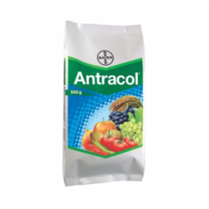 Antracol.png
