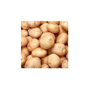 potato_kisanmandi.jpeg