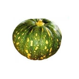 GREEN PUMPKIN.jpg