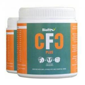 CFC Plus.jpg