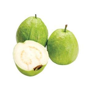 guava_1442036941_L.jpg