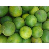 5 tons of A-Grade quality Mausambi available