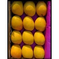 Devgarh hapus mango