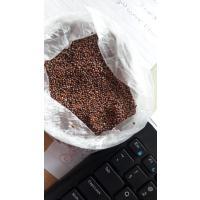 Ragi/Finger Millet (Desi)