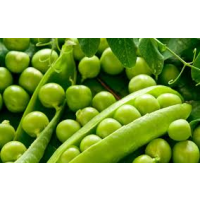 Matar (Green peas)