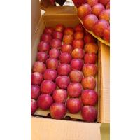 Orchards Fresh Apples