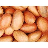 Garcinia kola nuts( bitter kola nuts)
