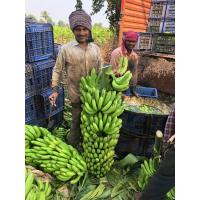 Want to sell Banana