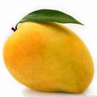 Mango 6 varieties
