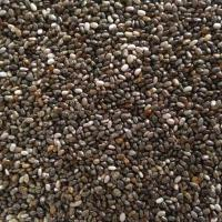 Good quality Chia seeds
