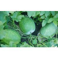Fresh to you from our land Kalyana poosanikai