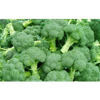 Home grown Broccoli Available
