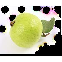 fresh best quality Guava(organic)